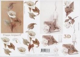 3D Etappen-Bogen-4169505-Cala/Kerze/Bibel